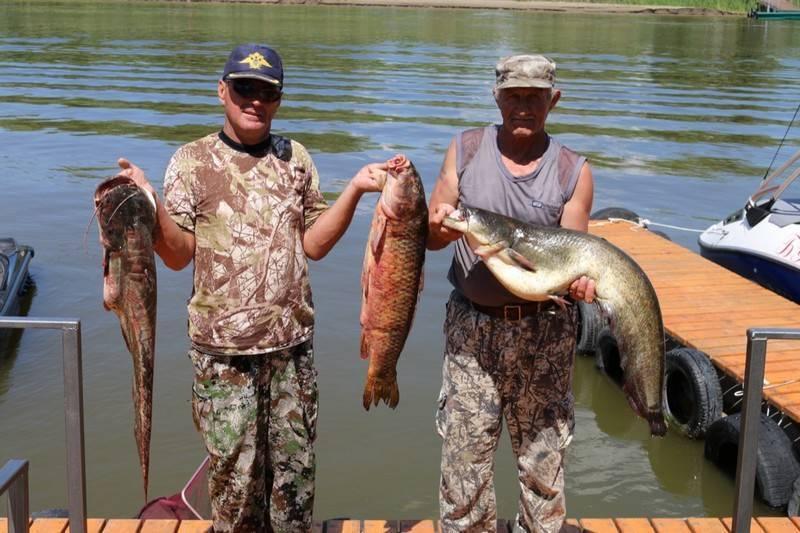 Рыбалка в одинцовском районе (раскаты, власово и другие рыболовные базы), какая рыба водится — читаем суть