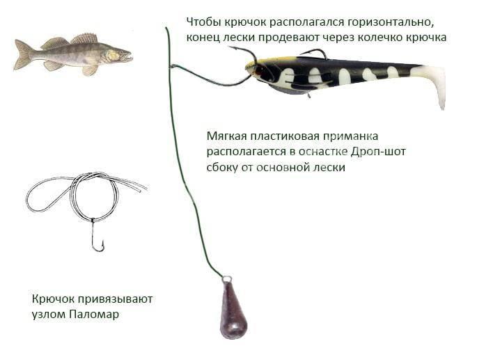 Ловля на оснастку дроп-шот с берега - техника и тактика