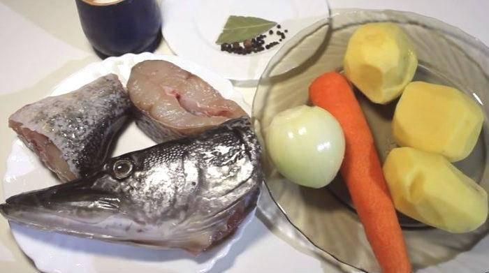 Рыба щука: польза и вред для здоровья, состав и калорийность, диетические свойства