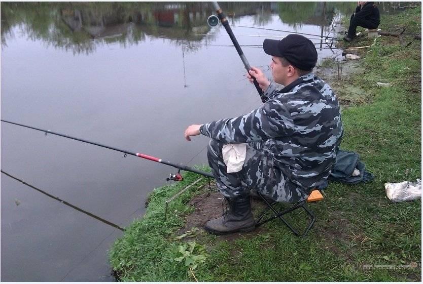 Рыбалка на онежском озере: какая рыба водится в онеге, лучшие места для ловли