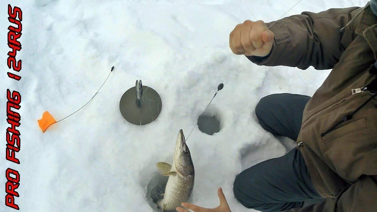 Зимняя рыбалка в феврале на щуку судака леща пескаря окуня