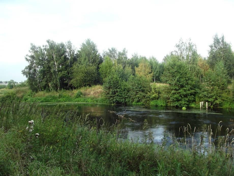 Река пехорка куда впадает и течет схема. река пехорка - энциклопедическая справка. уникальная водная система