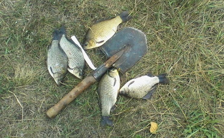 Все о рыбалке в набережных челнах