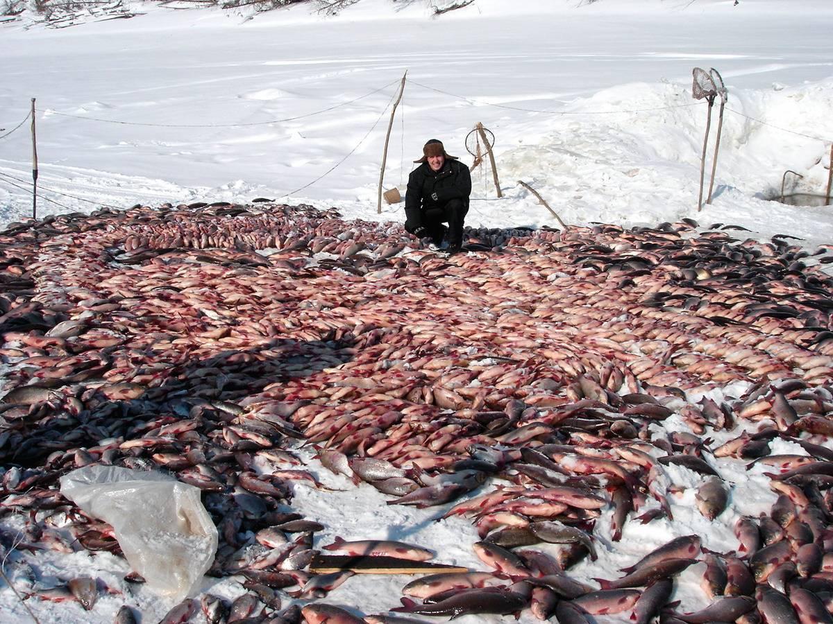 Рыболовная база «рыбацкая деревня»
