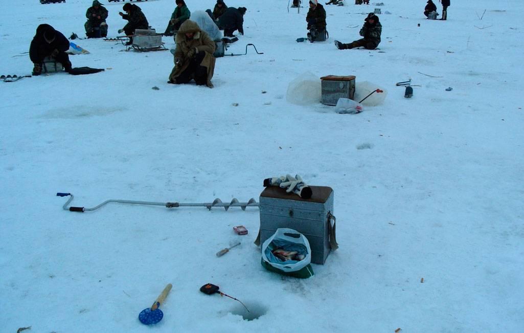 7 лучших наживок для ловли сазана – рыбалке.нет