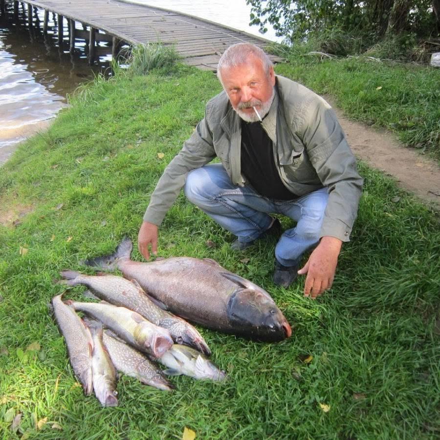 Рыбалка в смоленске и смоленской области, где лучше ловить на днепре, в поселке шмаково