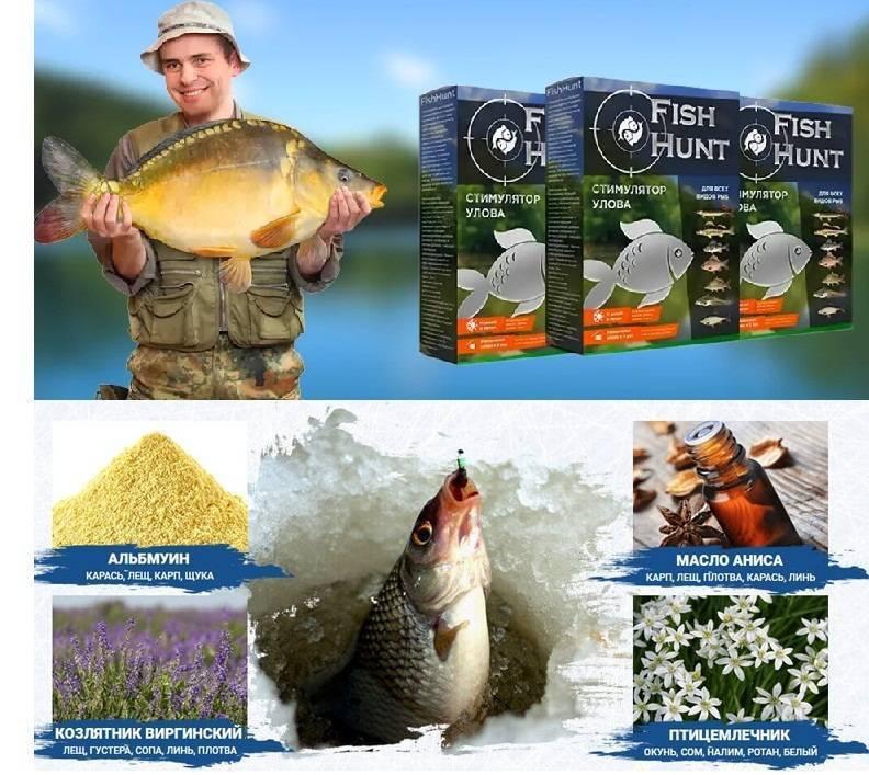 Fish hunt отзывы
