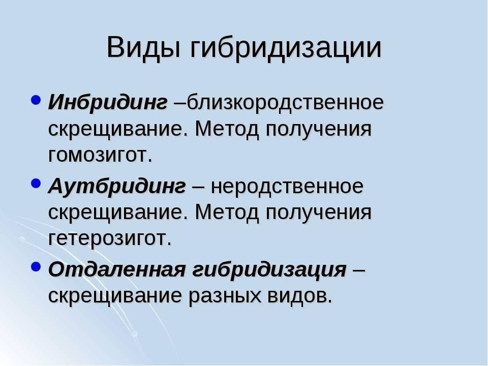 Нерестовый запрет — 2020 в ростовской области: сроки и места лова, запреты и штрафы
