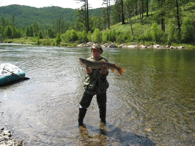 Рыбалка в забайкальском крае и в чите - fishingwiki