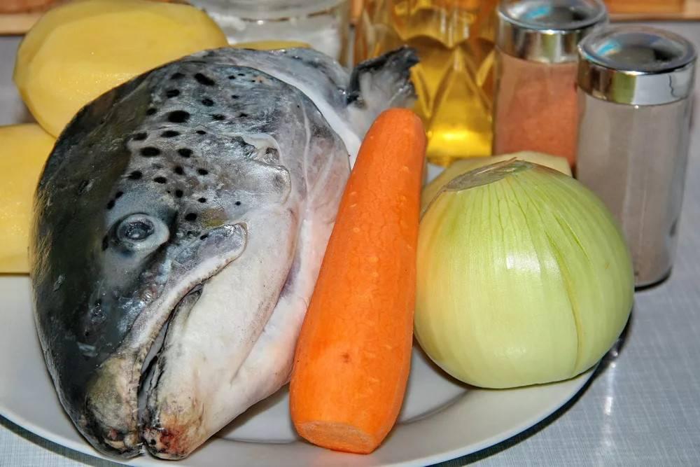 Пошаговый рецепт приготовления ухи из семги