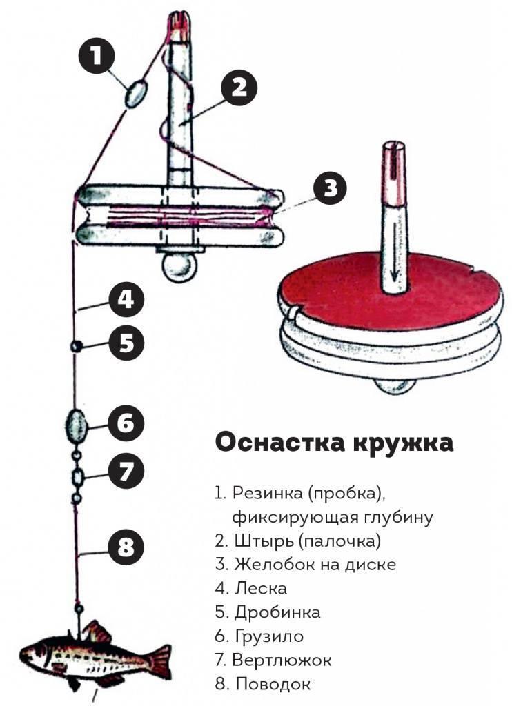 Ловля щуки на кружки: изготовление снасти, выбор места и живца