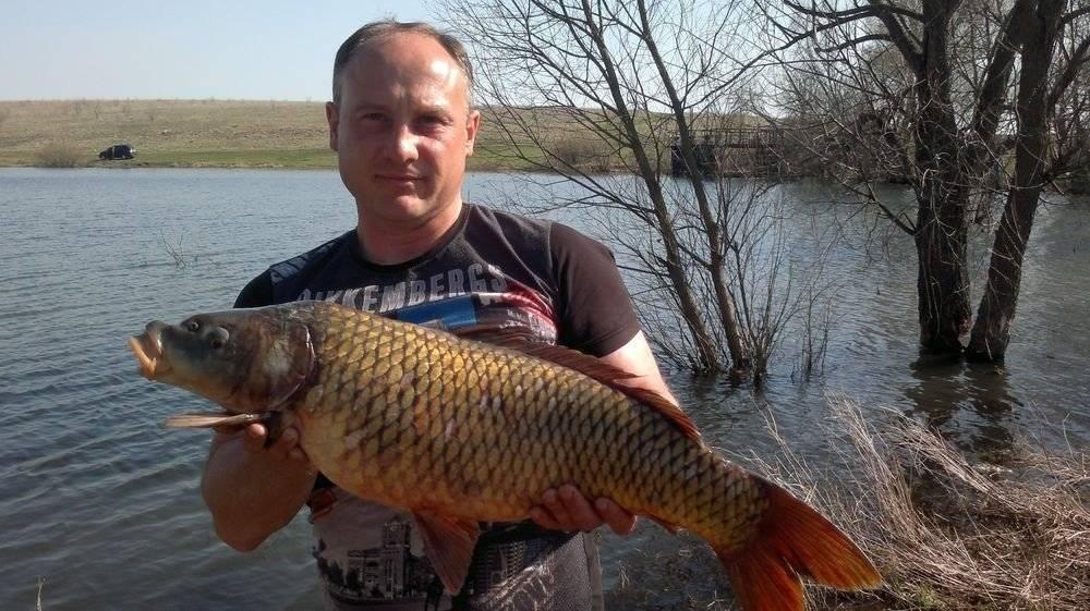 Рыбалка в тульской области: вести с водоемов