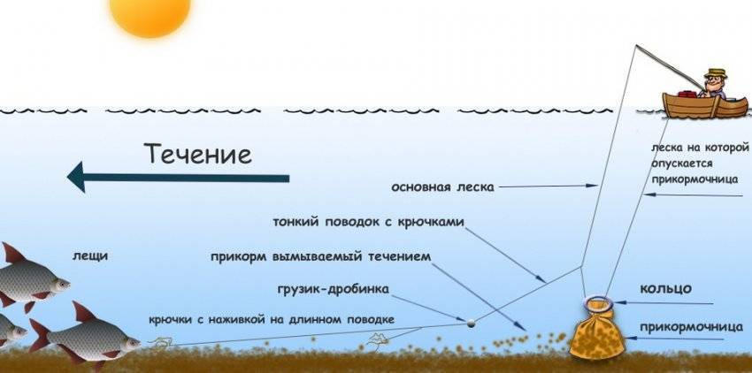 Ловля леща на кольцо с лодки: изготовление снасти и особенности прикормки, видео