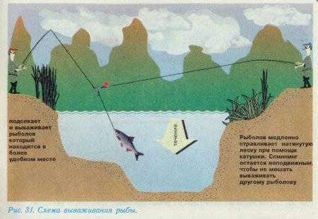 Донная снасть для ловли на течении: схема и изготовление