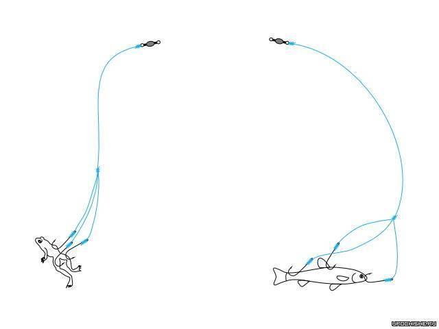 Ловля голавля на удочку: особенности, техника и тактика