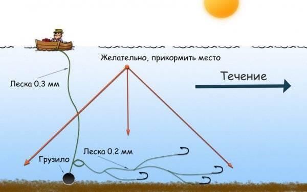 Ловля леща на кольцо с лодки: снасти, наживка и техника