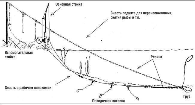 Ловля на фидер: оснастки, секреты, особенности, пошаговая инструкция для начинающих