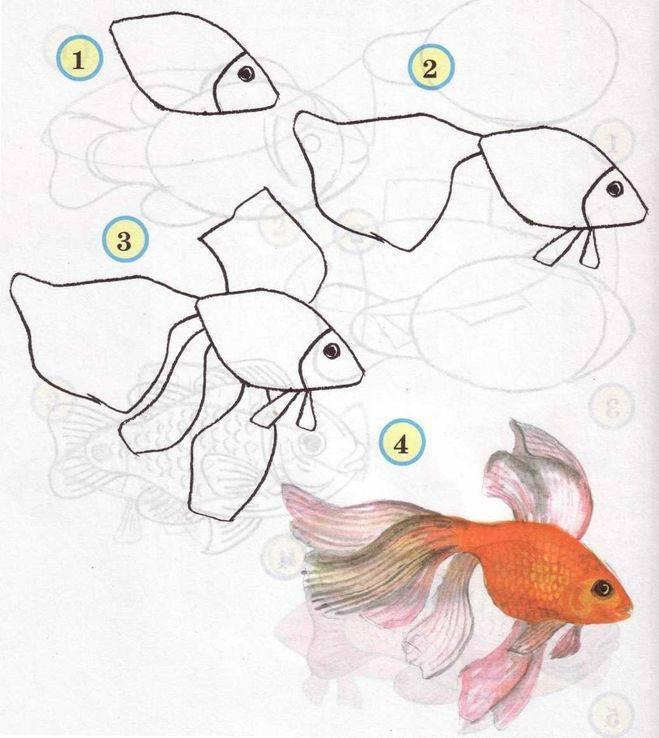 Рисунок о рыбаке и рыбке карандашом – как нарисовать сказку? | рисуем поэтапно сказку маша и медведь, колобок, о рыбаке и рыбке