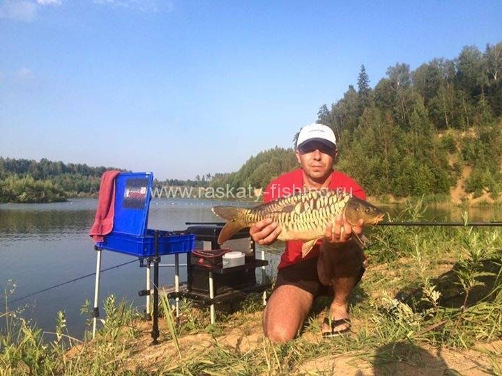 Платная и бесплатная рыбалка в одинцовском районе