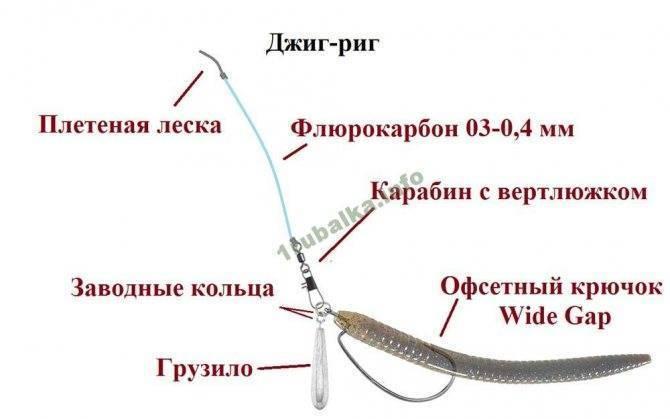 Джиг на щуку: подбор джиг головки, выбор приманок, ловля на летом, весной,