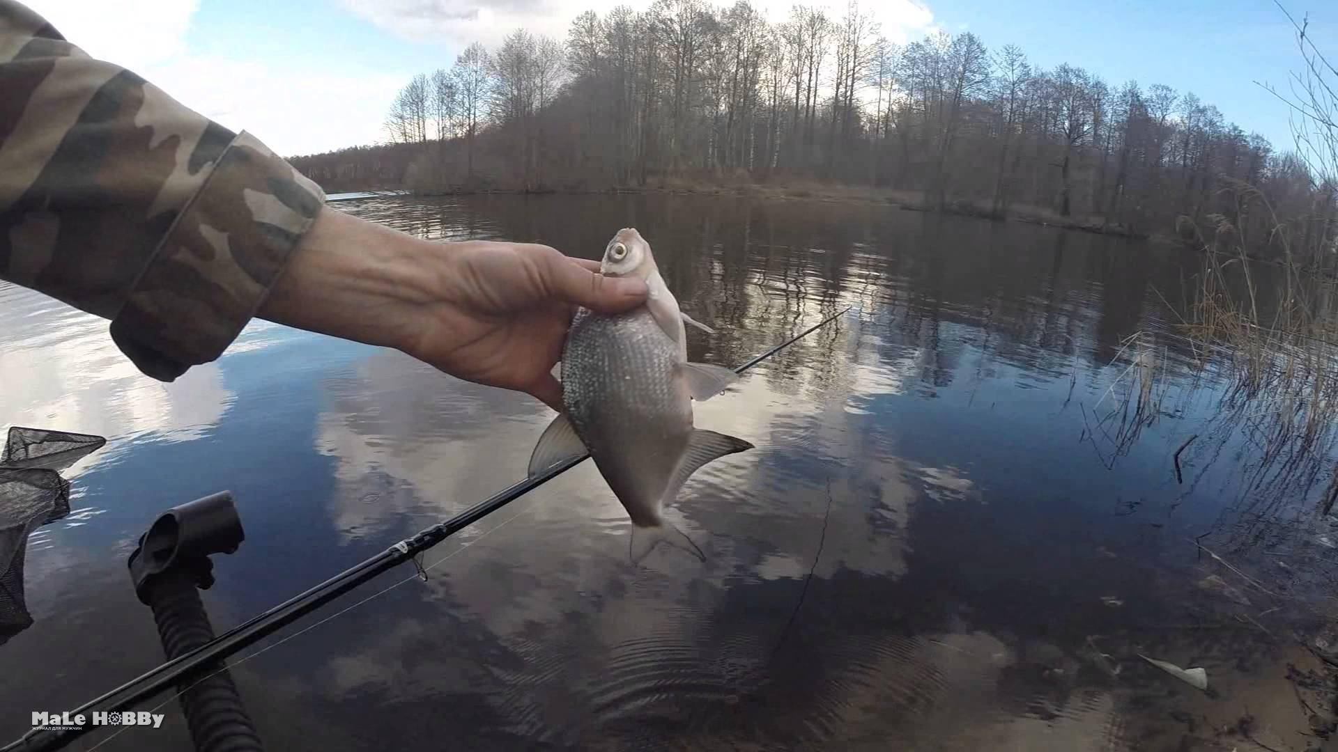 Рыбалка в шатурском районе (г.о. шатура). форум и отчеты