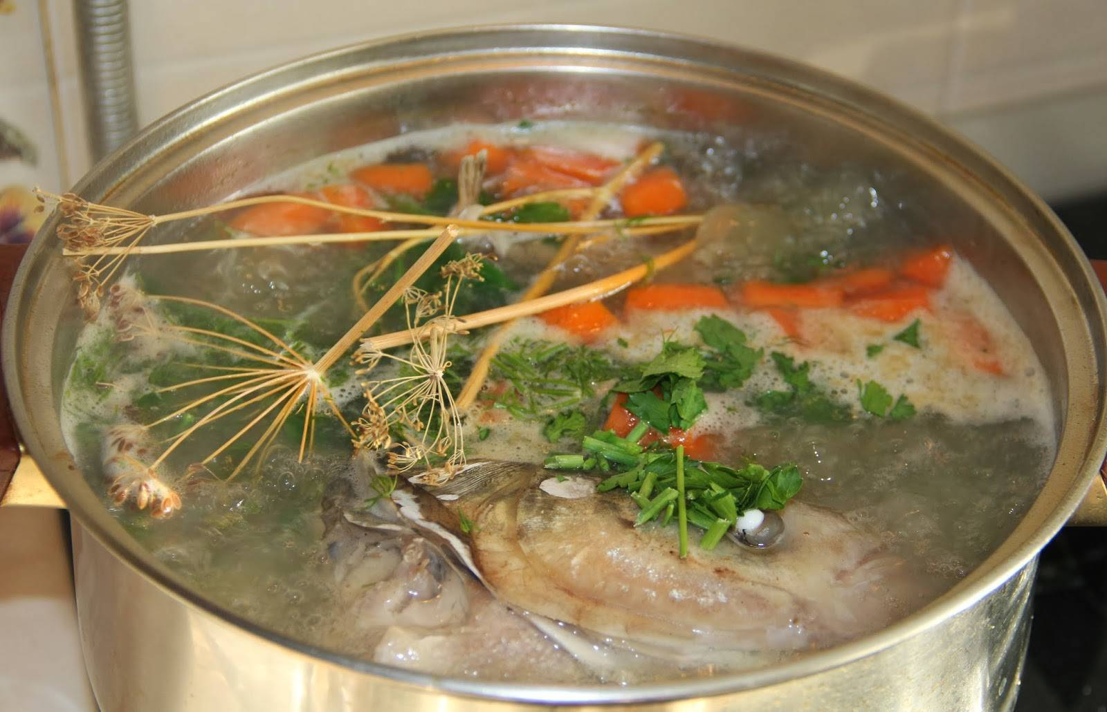 Уха из речной рыбы
