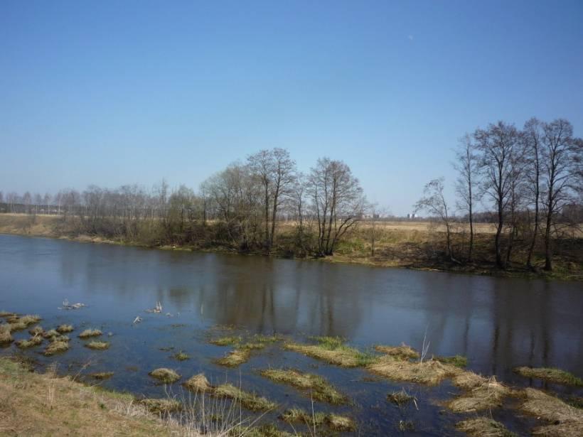 Рыбалка в ногинске и ногинском районе, особенности ловли в елизаветино, клязьме