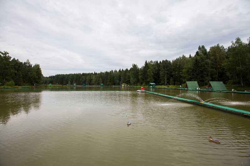 Рыболовные базы подмосковья с рыбалкой и проживанием: инфраструктура и цены