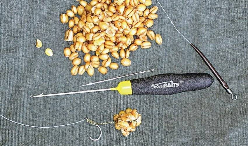 Как варить пшеничную кашу на молоке ? сколько варится пшеничка, приготовление