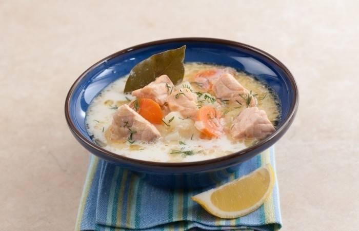 Уха из красной рыбы - оригинальные рецепты вкусного и сытного супа