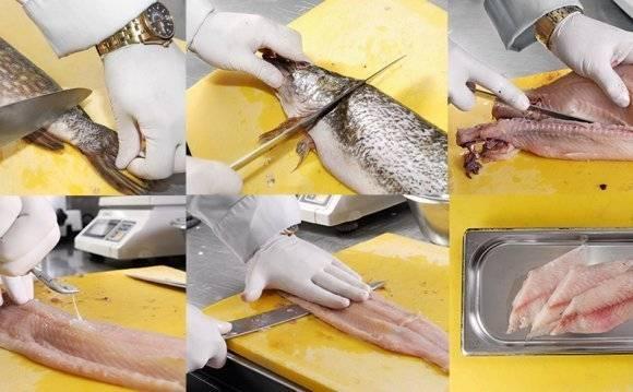✅ как очистить щуку от слизи. полезные свойства рыбы - sundaria.su