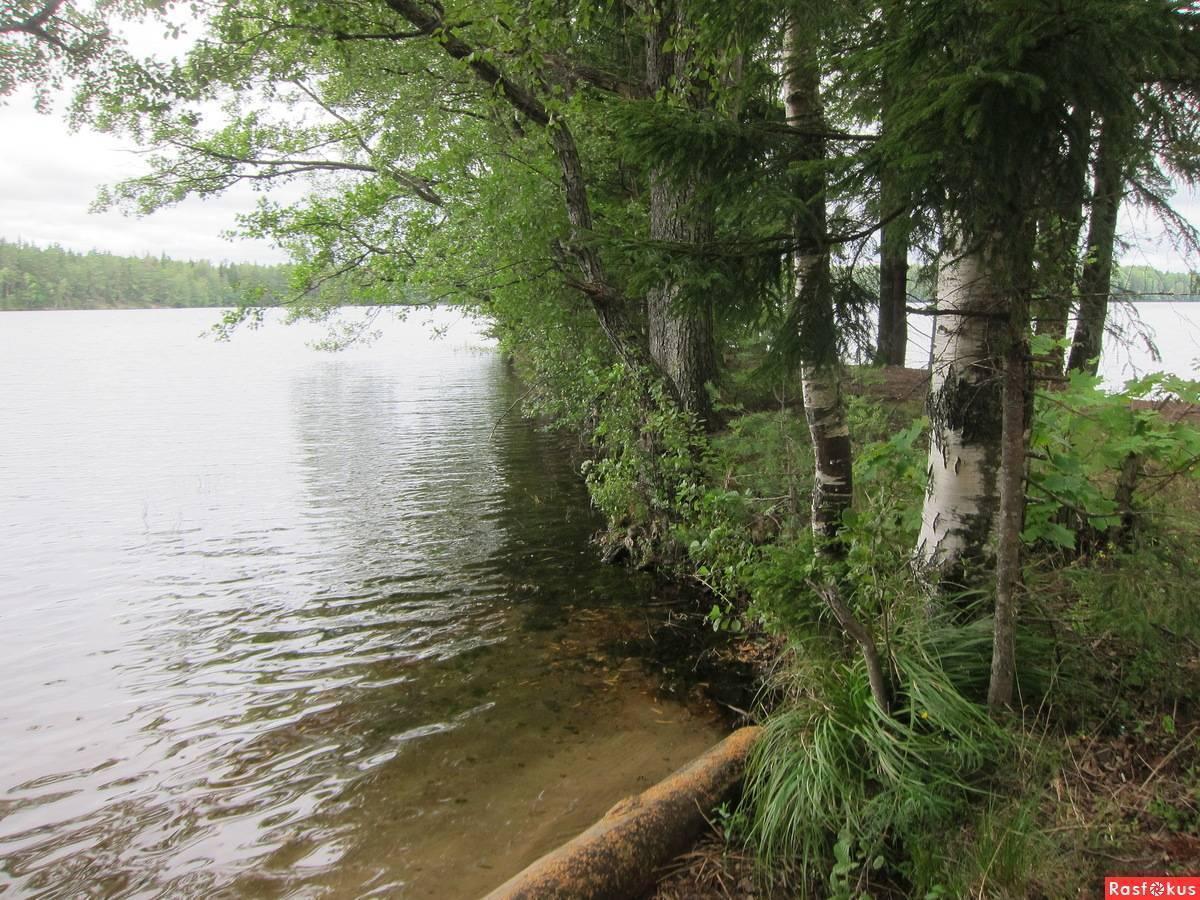 Экологический обзор воздействия при развитии водных туристских маршрутов (стр. 3 ) | контент-платформа pandia.ru
