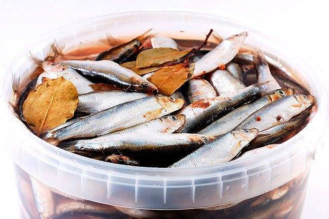 Килька пряного посола в домашних условия, вкусные рецепты, полезные свойства