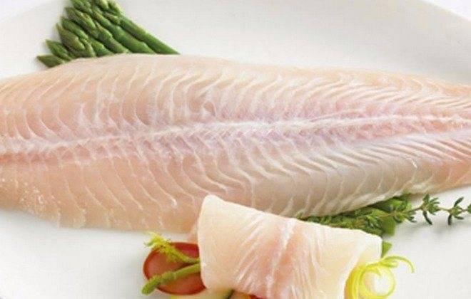 Рыба пангасиус: среда обитания, полезные свойства и вред, способы приготовления и советы по выбору