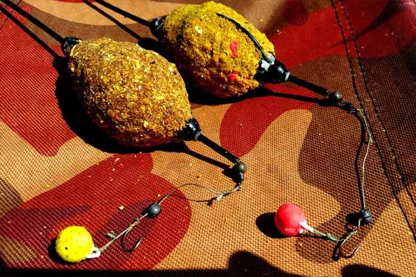 Лучшие наживки и приманки для ловли белого амура - на что и как ловить весной, летом и осенью, лучшие снасти, рецепты прикормки, видео