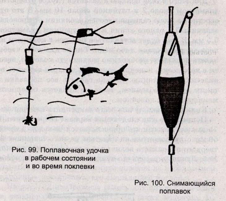 Ловля уклейки: на что клюет, как ловить на мормышку, прикормки своими руками