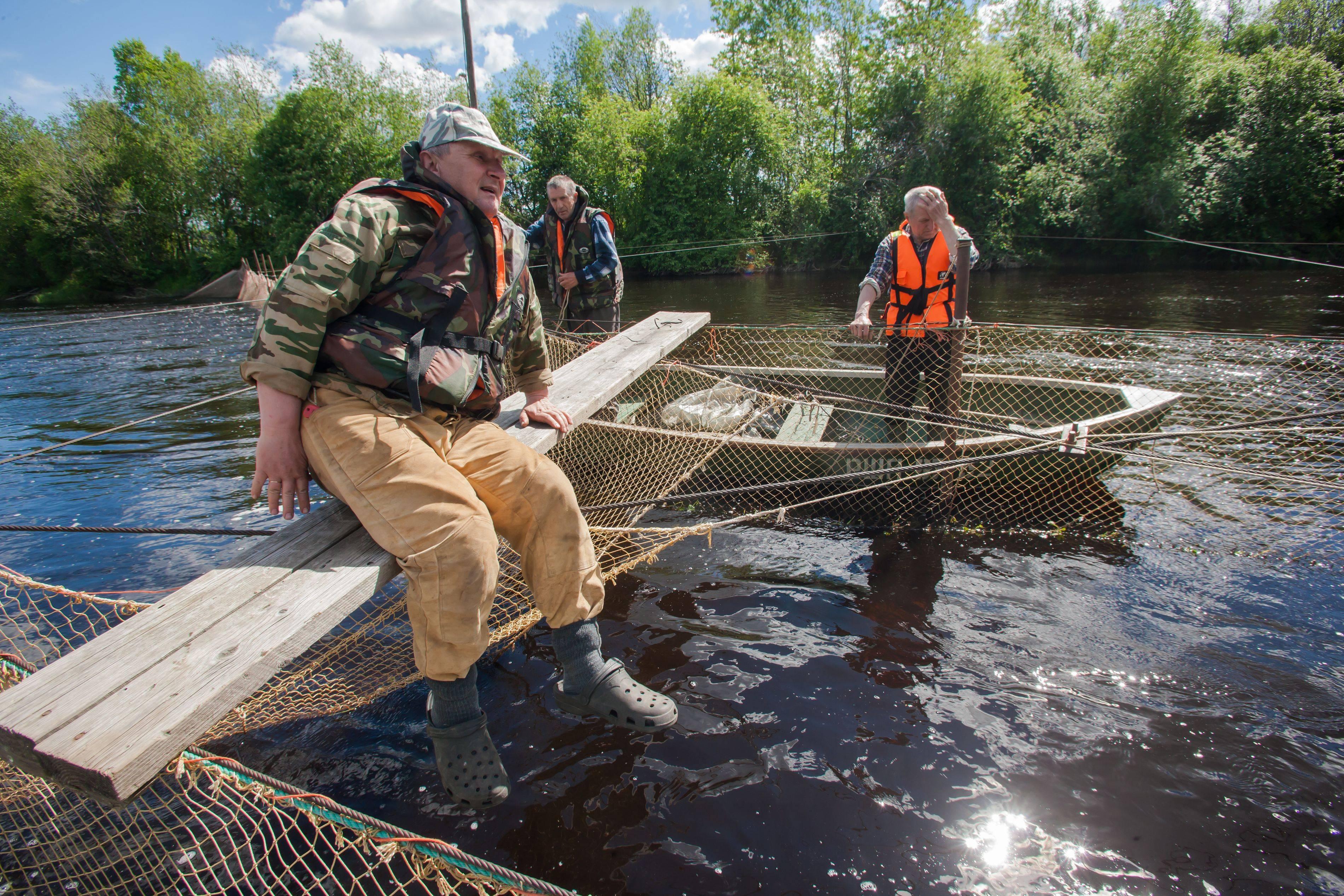 Рыбакам-любителям разрешили ловить сетями для пропитания