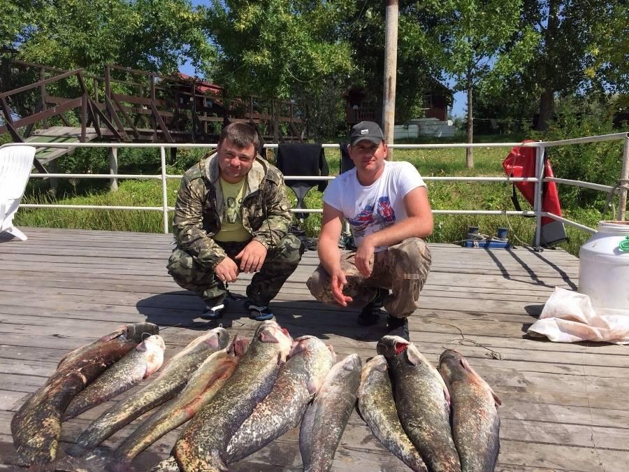 Базы отдыха на волге - астрахань лучшее место для рыбалки и отдыха всей семьёй | fishhunting