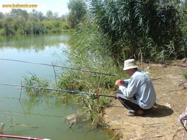 Отчеты о рыбалке, тольятти: платная, бесплатная, зимняя рыбалка, озера за коровником в селе ташла, где клюет судак?
