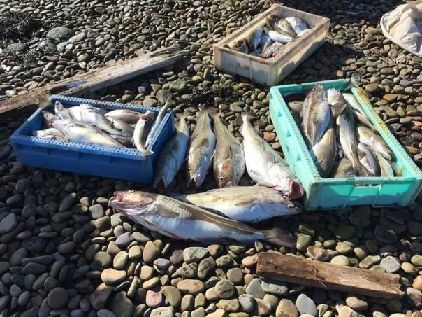 Рыбалка в мурманской области (51)   карта рыболовных мест