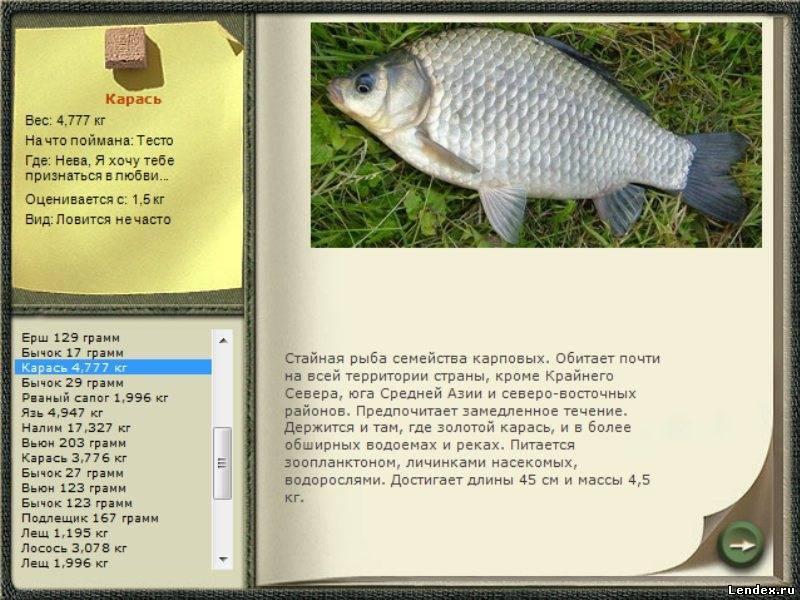 Лунный календарь рыбака, подсказки для удачной ловли