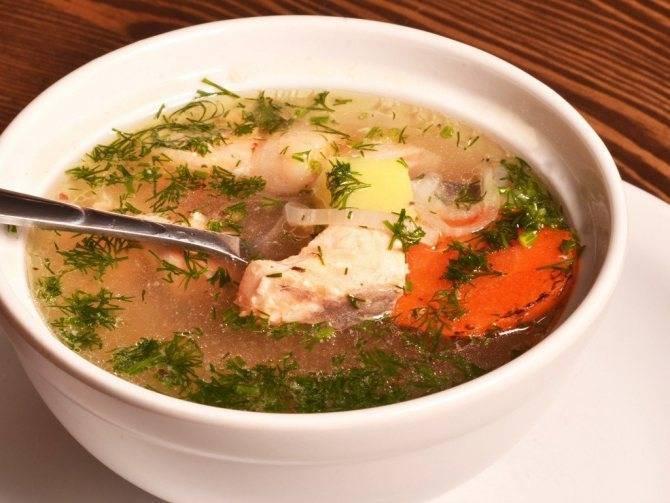 Рыбный суп — 10 лучших рецептов приготовления вкусного супа из рыбы