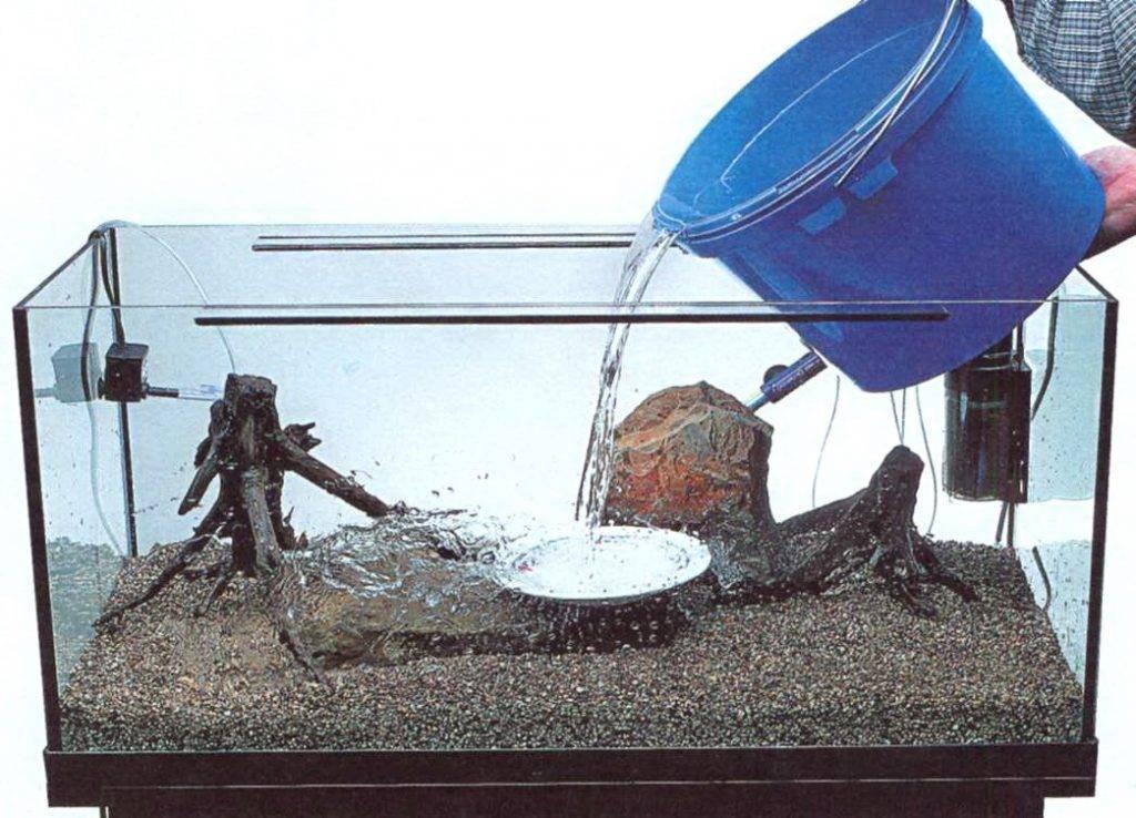 Как поменять воду в аквариуме с рыбками: зачем это нужно, как правильно произвести подмену, сколько раз надо делать, что с растениями, как реже менять