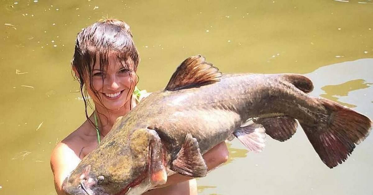 Как поймать рыбу голыми руками и возможно ли это?