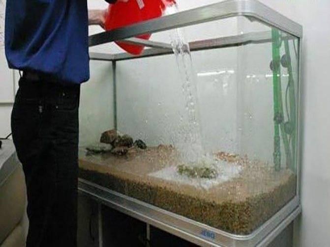 Сколько отстаивать воду для аквариума: водопроводную из под крана, речную, колодезную, как все правильно нужно сделать перед запуском рыб, количество дней