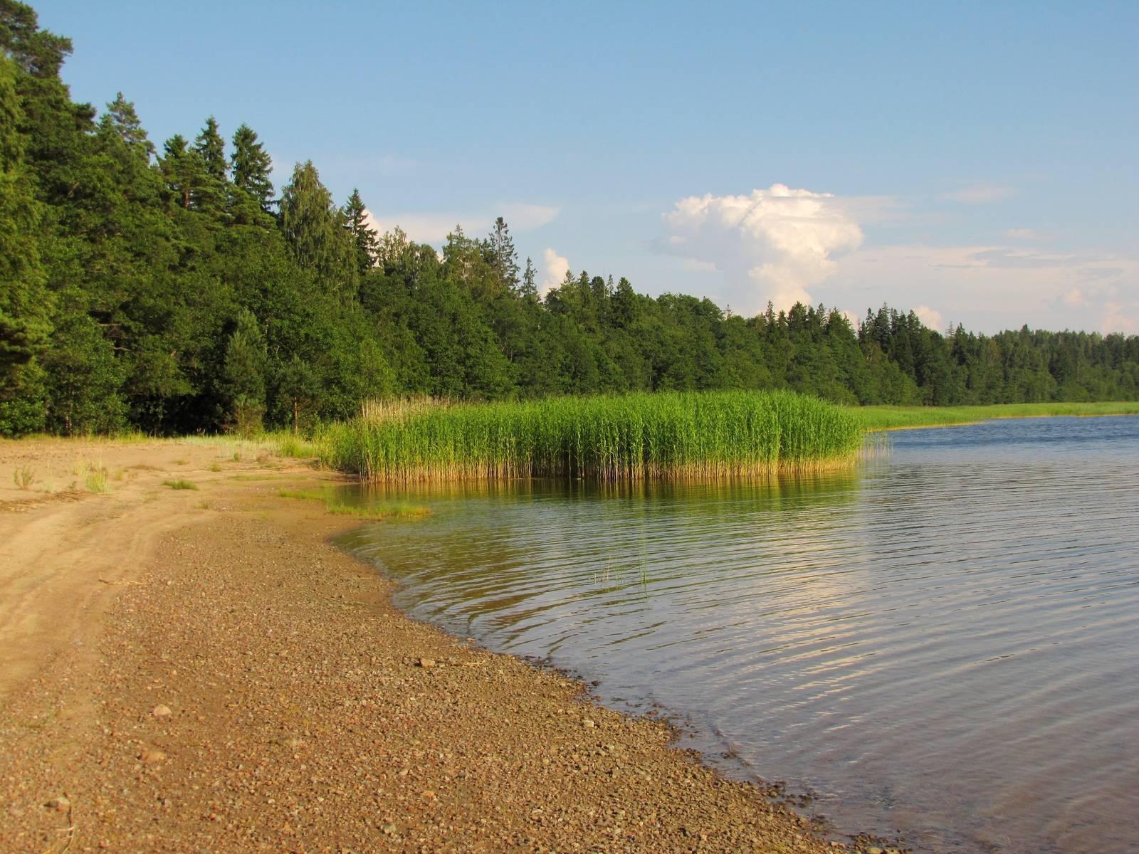 Почему так много озер в тундре, зональные особенности. чем объясняется такой факт