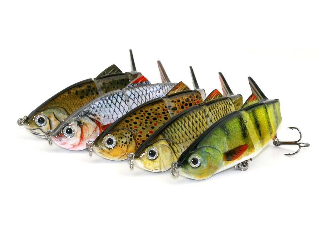 Рыба змееголов: описание хищника, поведение, способ ловли