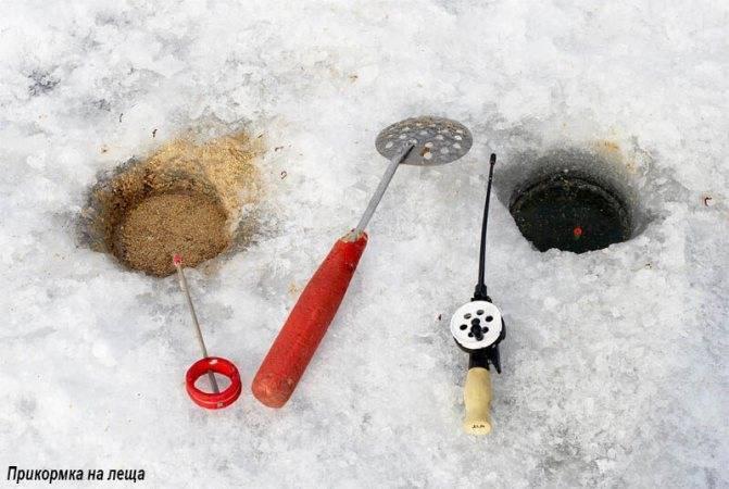 Как ловить карася зимой | выбор приманок, насадок и прикормки