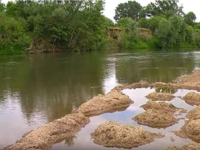Река сейм в курской области: карта, описание, достопримечательности, города, рыбалка и сплав