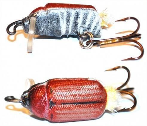 Как ловить голавля, используя майского жука и другие приманки